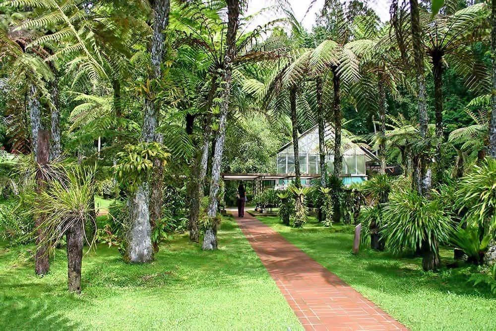 Công viên ở Bali